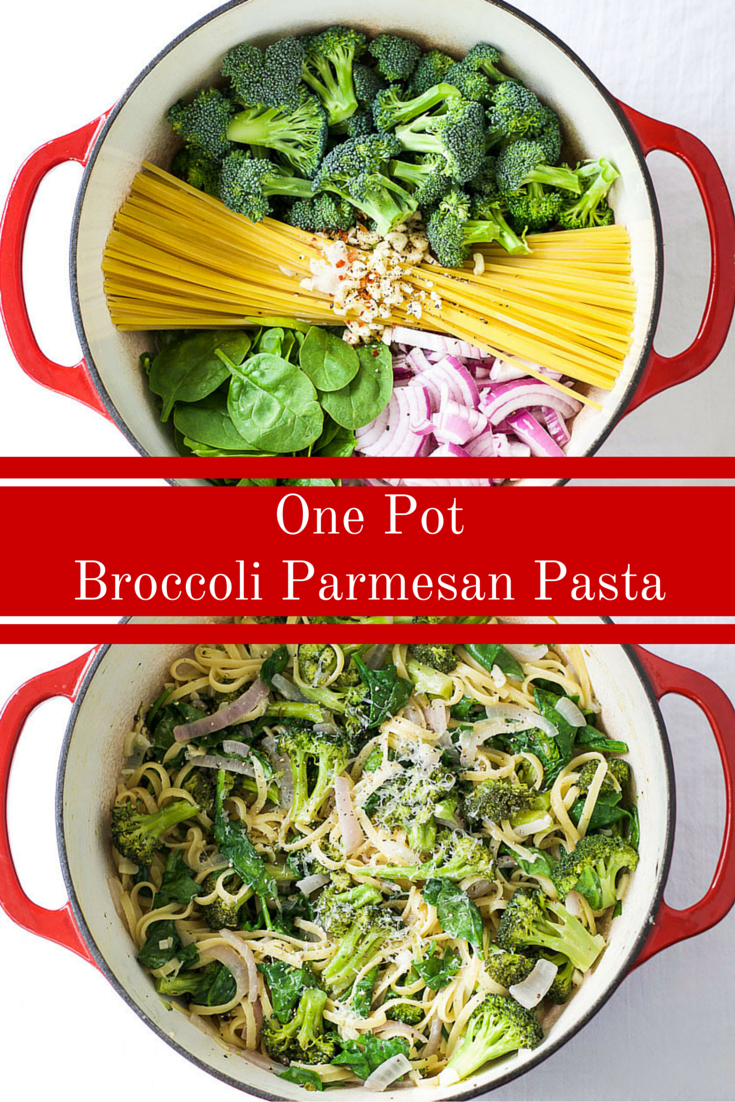 One Pot Broccoli Parmesan Pasta The Wholesome Fork